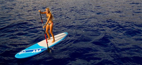 Fanatic Paddle Standard Alu